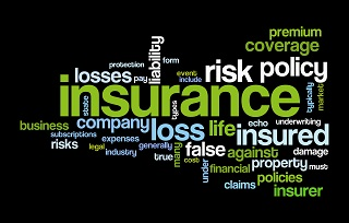 image of insurance terms as word art